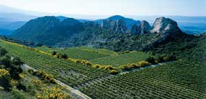 Vineyards of Gigondas Tours